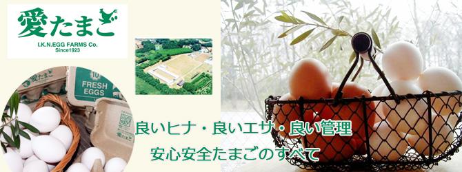 養鶏牧場の産直たまご通販ショップ 愛たまご