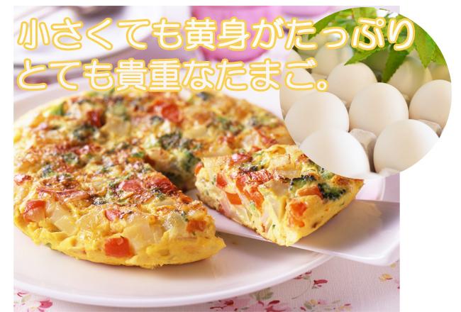 招福たまご(Sサイズ) 20個詰め | 養鶏農場の産直たまご通販ショップ 愛たまご